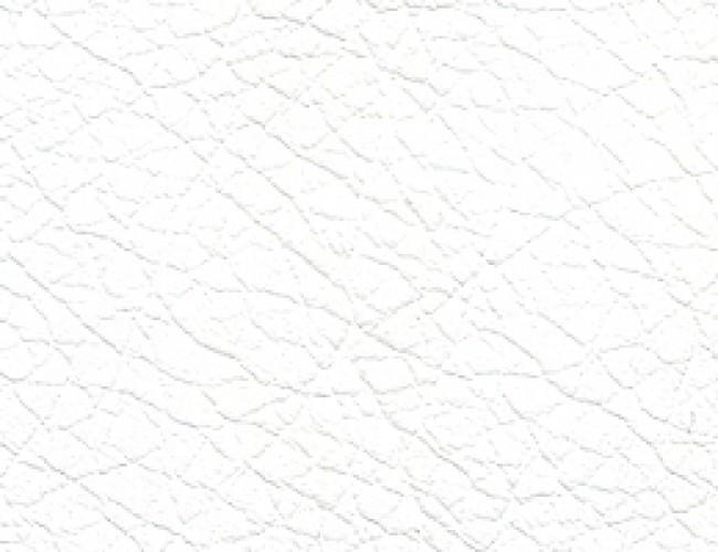 Sahara-101_0