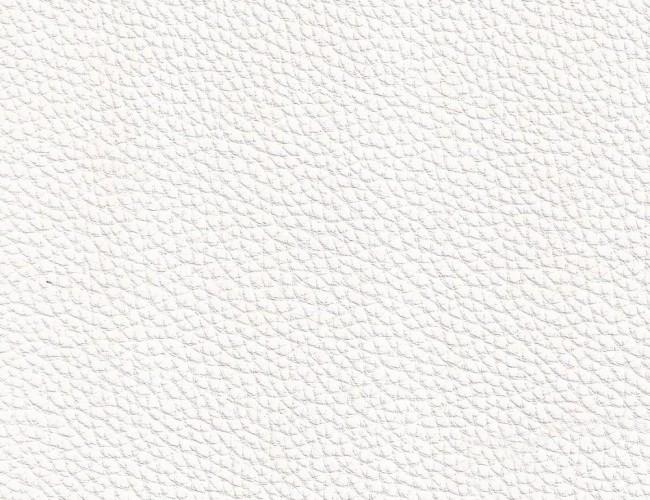 Ohio 401 white